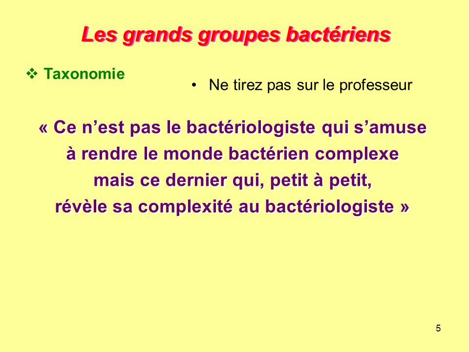 5 Les grands groupes bactériens « Ce n'est pas le bactériologiste qui s'amuse à rendre le monde bactérien complexe mais ce dernier qui, petit à petit,