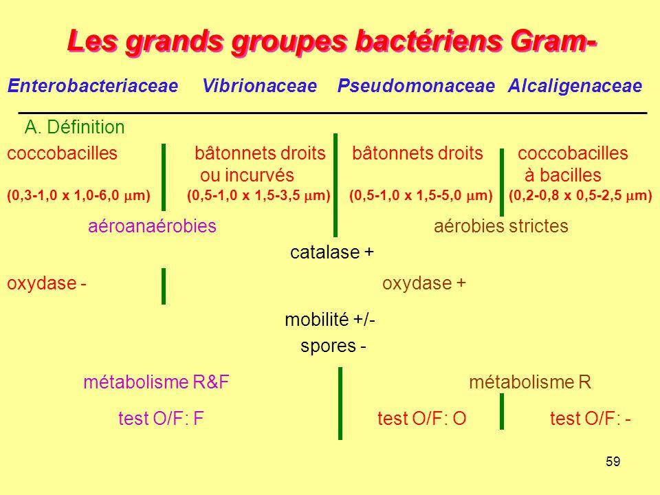 59 A. Définition Les grands groupes bactériens Gram- Enterobacteriaceae VibrionaceaePseudomonaceae Alcaligenaceae catalase + mobilité +/- spores - aér