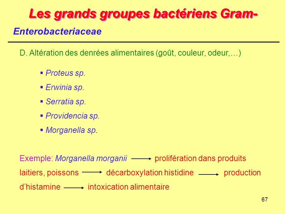 67 Les grands groupes bactériens Gram- Enterobacteriaceae D. Altération des denrées alimentaires (goût, couleur, odeur,…)  Proteus sp.  Erwinia sp.