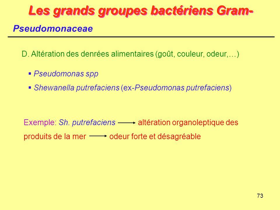 73 Les grands groupes bactériens Gram- Pseudomonaceae D. Altération des denrées alimentaires (goût, couleur, odeur,…)  Pseudomonas spp  Shewanella p