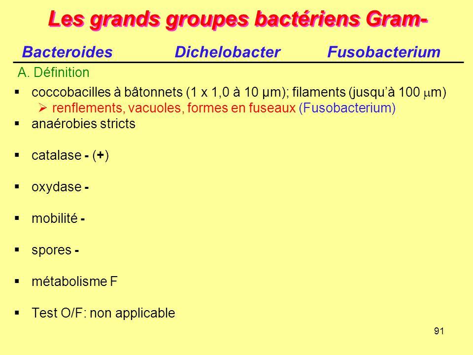91 Les grands groupes bactériens Gram-  coccobacilles à bâtonnets (1 x 1,0 à 10 µm); filaments (jusqu'à 100  m)  renflements, vacuoles, formes en f
