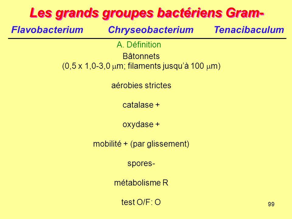 99 Les grands groupes bactériens Gram- A. Définition Bâtonnets (0,5 x 1,0-3,0  m; filaments jusqu'à 100  m) aérobies strictes catalase + oxydase + m