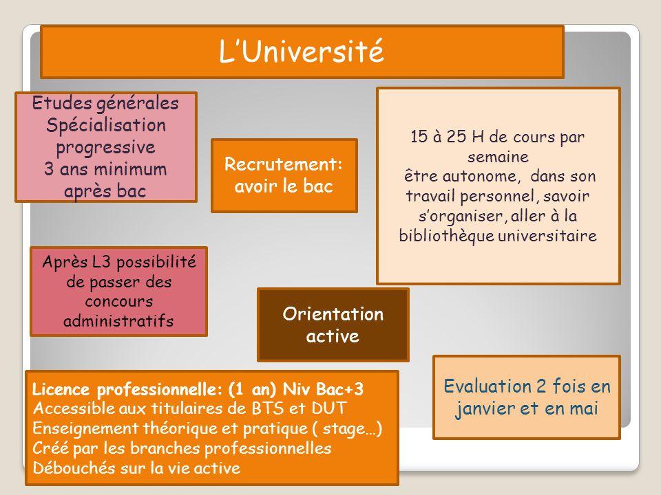 L'Université Etudes générales Spécialisation progressive 3 ans minimum après bac 15 à 25 H de cours par semaine être autonome, dans son travail person
