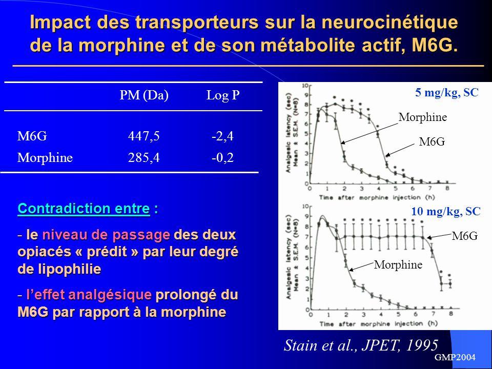 GMP2004 Hypothèses posées dans la littérature  Différence d'affinité pour les récepteurs µ Affinité pour les récepteurs µ équivalente ou supérieure pour la morphine Affinité pour les récepteurs µ équivalente ou supérieure pour la morphine (Christensen et al, 1987, Abbott et al., 1988, Paul et al., 1989)  Action sur des sous-types de récepteurs µ différents : controverse  Action sur des sous-types de récepteurs µ différents : controverse (Rossi et al.