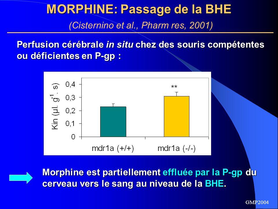 GMP2004 M6G : Passage de la BHE Bourasset et al., J Neurochem, 2003 Le M6G est au contraire transporté du sang vers le cerveau au niveau de la BHE par au moins deux transporteurs : GLUT-1 GLUT-1 Transporteurs sensibles à la digoxine et au PSC833, pouvant appartenir à la famille des Oatps.