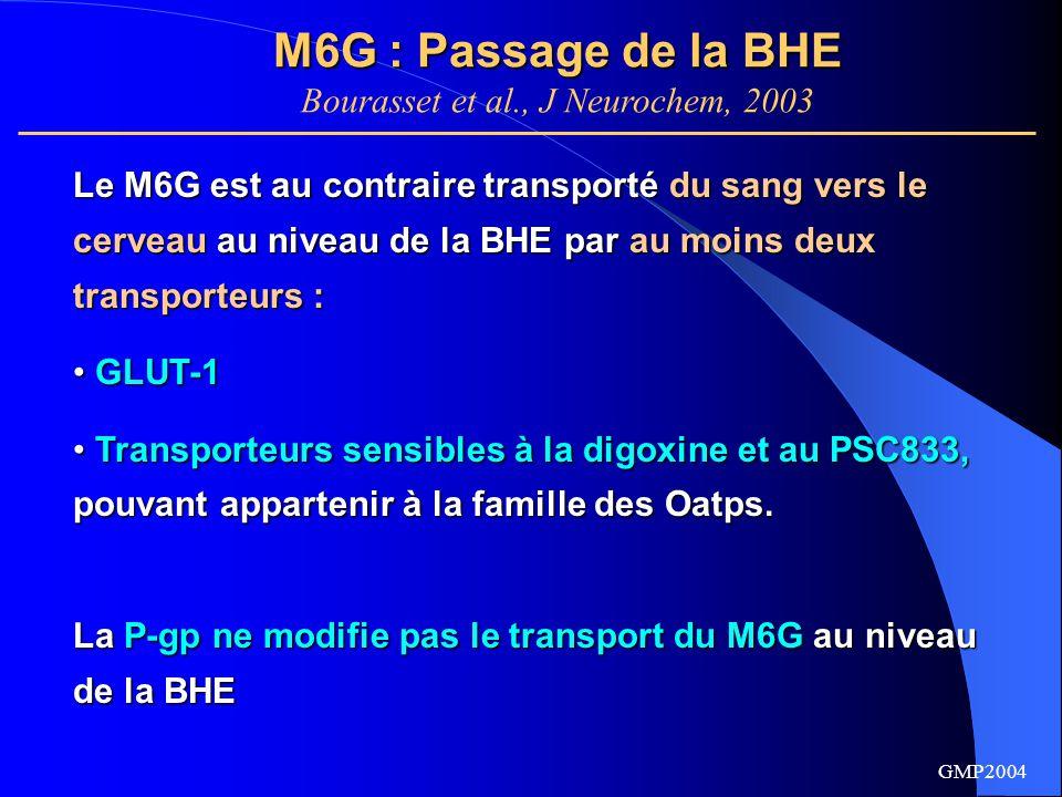 GMP2004 Modélisations pharmacocinétiques Modèle 3 : BHE LECC/LCR transporteurs à la BHE et à l'interface LECC/LCR 2- M6G tout ordre 1 Modèle 1 : tout ordre 1 Modèle 2 : transporteur à la BHE