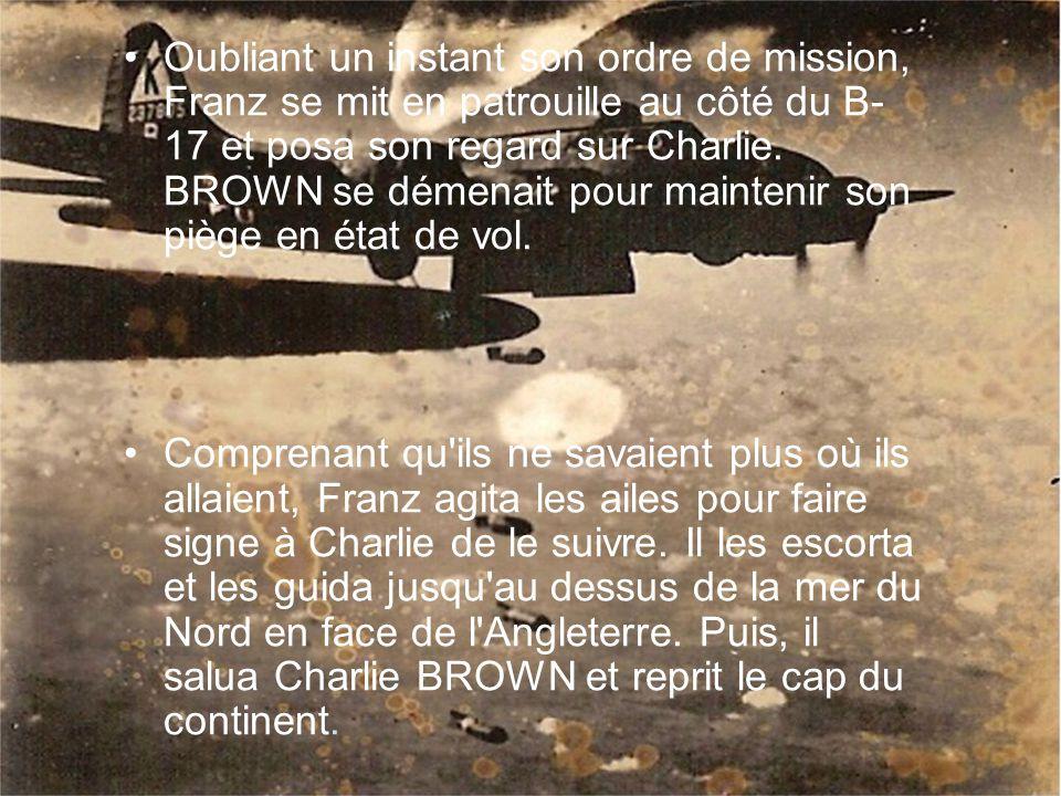 Oubliant un instant son ordre de mission, Franz se mit en patrouille au côté du B- 17 et posa son regard sur Charlie.