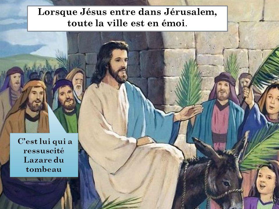Lorsque Jésus entre dans Jérusalem, toute la ville est en émoi. C'est lui qui a ressuscité Lazare du tombeau