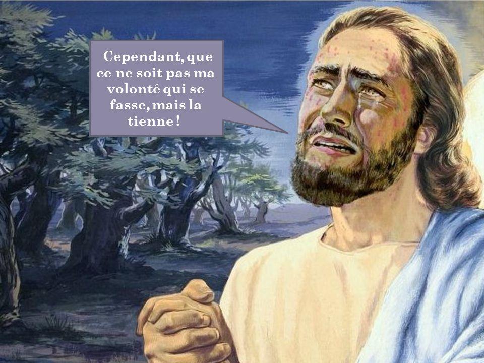 Cependant, que ce ne soit pas ma volonté qui se fasse, mais la tienne !
