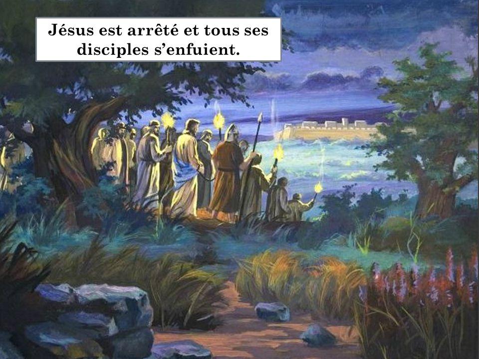 Jésus est arrêté et tous ses disciples s'enfuient.