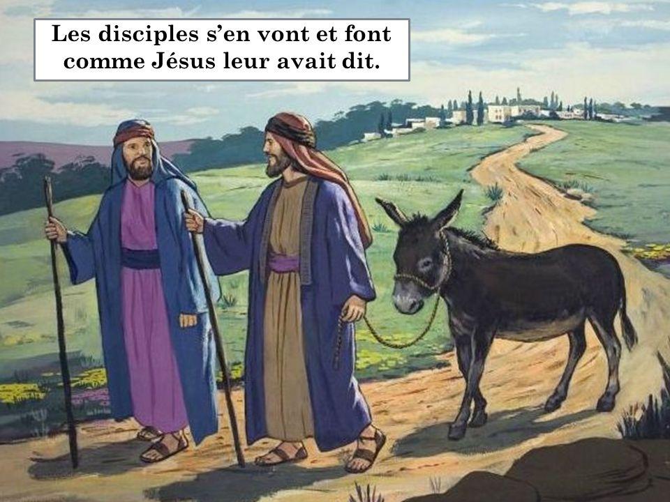 Les disciples s'en vont et font comme Jésus leur avait dit.