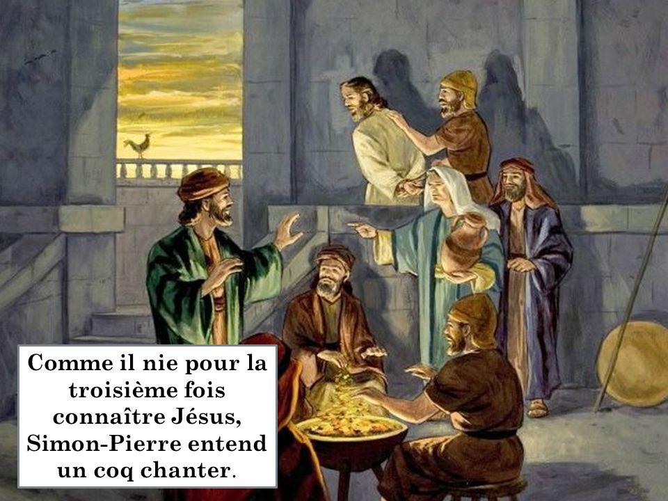 Comme il nie pour la troisième fois connaître Jésus, Simon-Pierre entend un coq chanter.