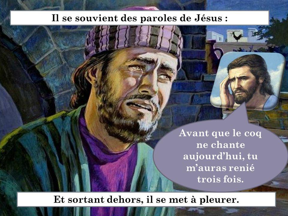 Il se souvient des paroles de Jésus : Et sortant dehors, il se met à pleurer. Avant que le coq ne chante aujourd'hui, tu m'auras renié trois fois.