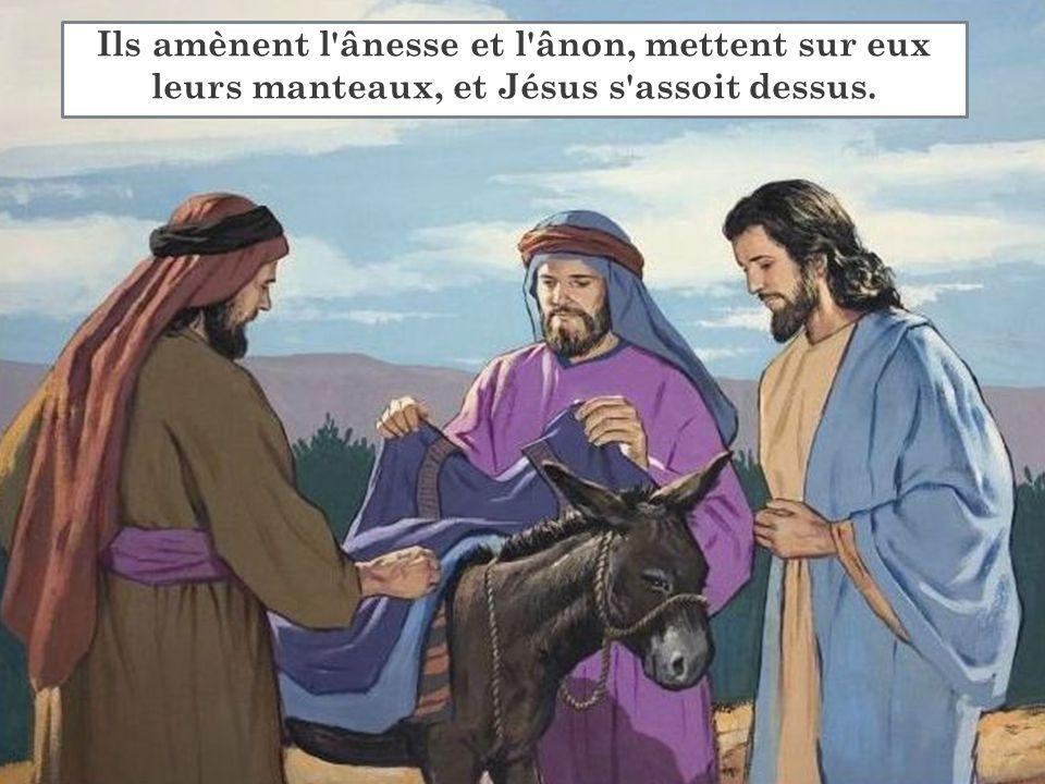 Ils amènent l'ânesse et l'ânon, mettent sur eux leurs manteaux, et Jésus s'assoit dessus.