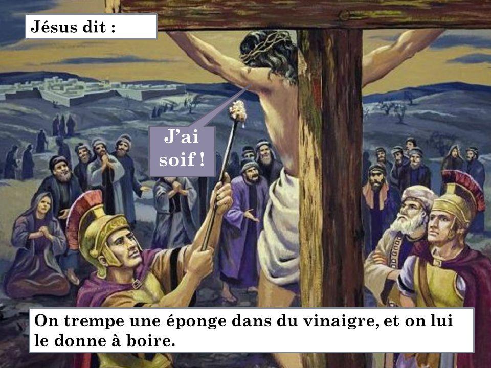 J'ai soif ! Jésus dit : On trempe une éponge dans du vinaigre, et on lui le donne à boire.
