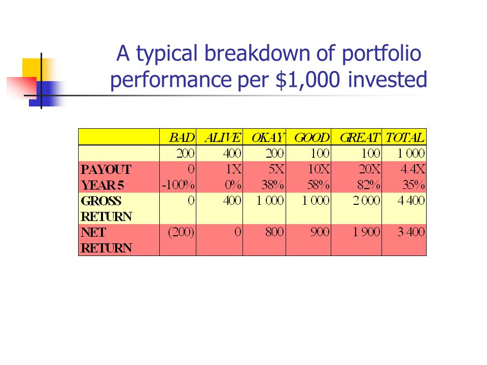 A typical breakdown of portfolio performance per $1,000 invested