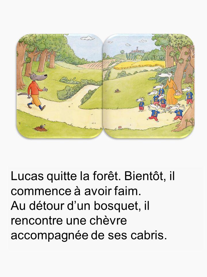 Lucas quitte la forêt. Bientôt, il commence à avoir faim. Au détour d'un bosquet, il rencontre une chèvre accompagnée de ses cabris.