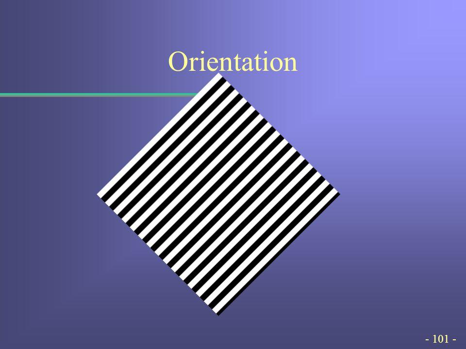 - 101 - Orientation