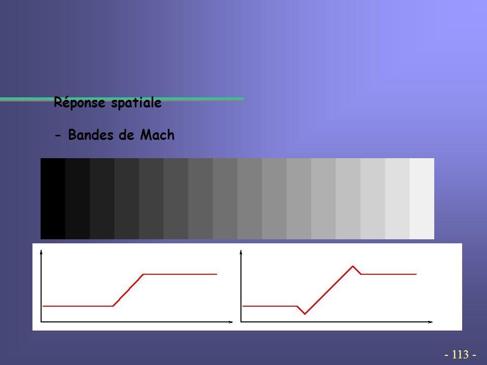 - 113 - Réponse spatiale - Bandes de Mach