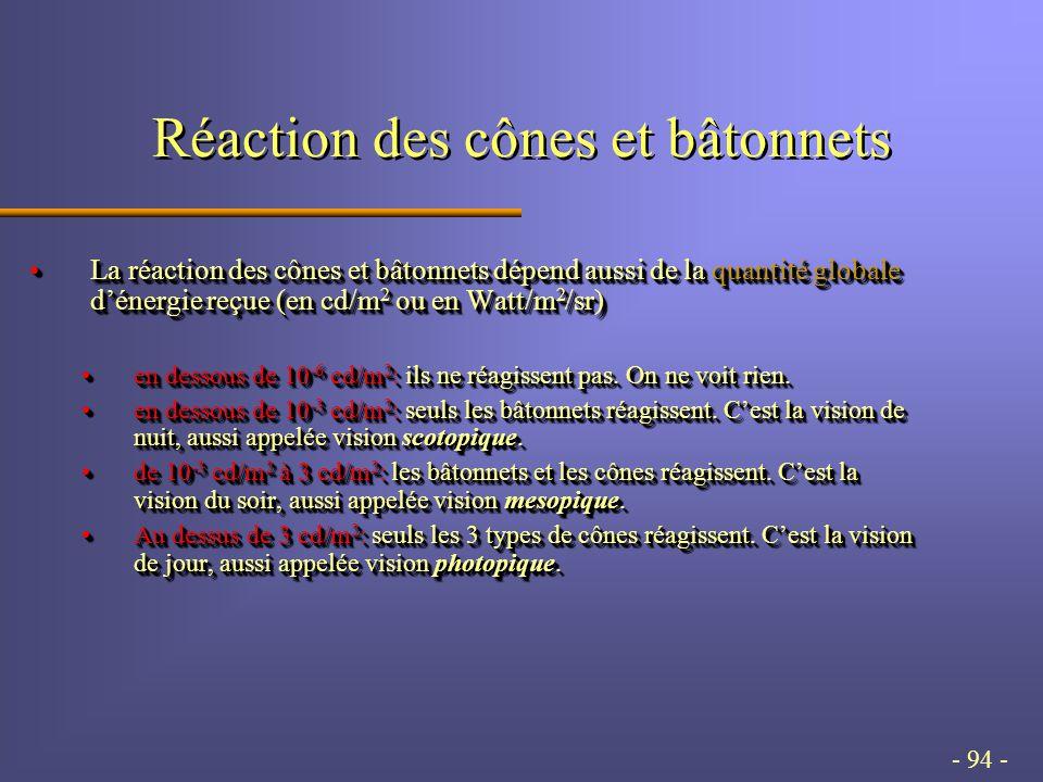 - 94 - Réaction des cônes et bâtonnets La réaction des cônes et bâtonnets dépend aussi de la quantité globale d'énergie reçue (en cd/m 2 ou en Watt/m 2 /sr)La réaction des cônes et bâtonnets dépend aussi de la quantité globale d'énergie reçue (en cd/m 2 ou en Watt/m 2 /sr) en dessous de 10 -6 cd/m 2 : ils ne réagissent pas.