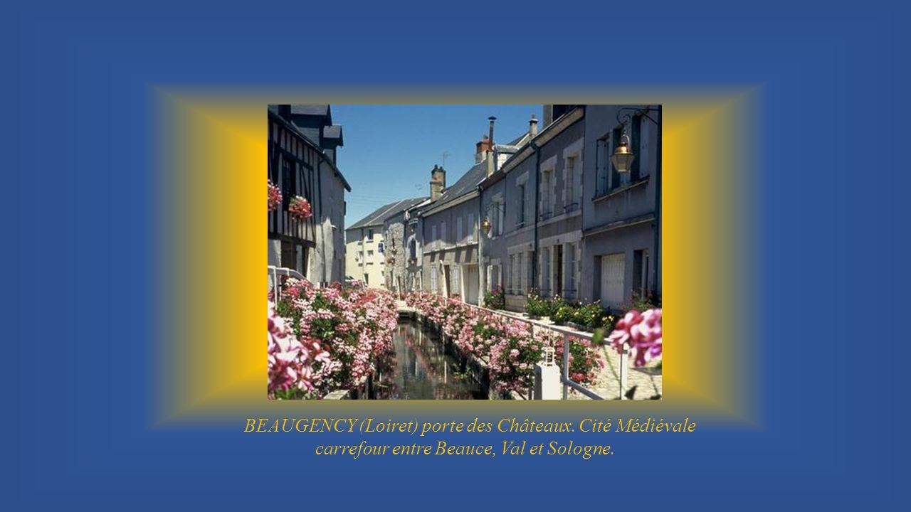 Eglise de la Madeleine CHATEAUDUN ville 3 fleurs, sur la route des Châteaux possède aussi une magnifique collection de tapisseries du 16éme siècle (histoire de Moïse).