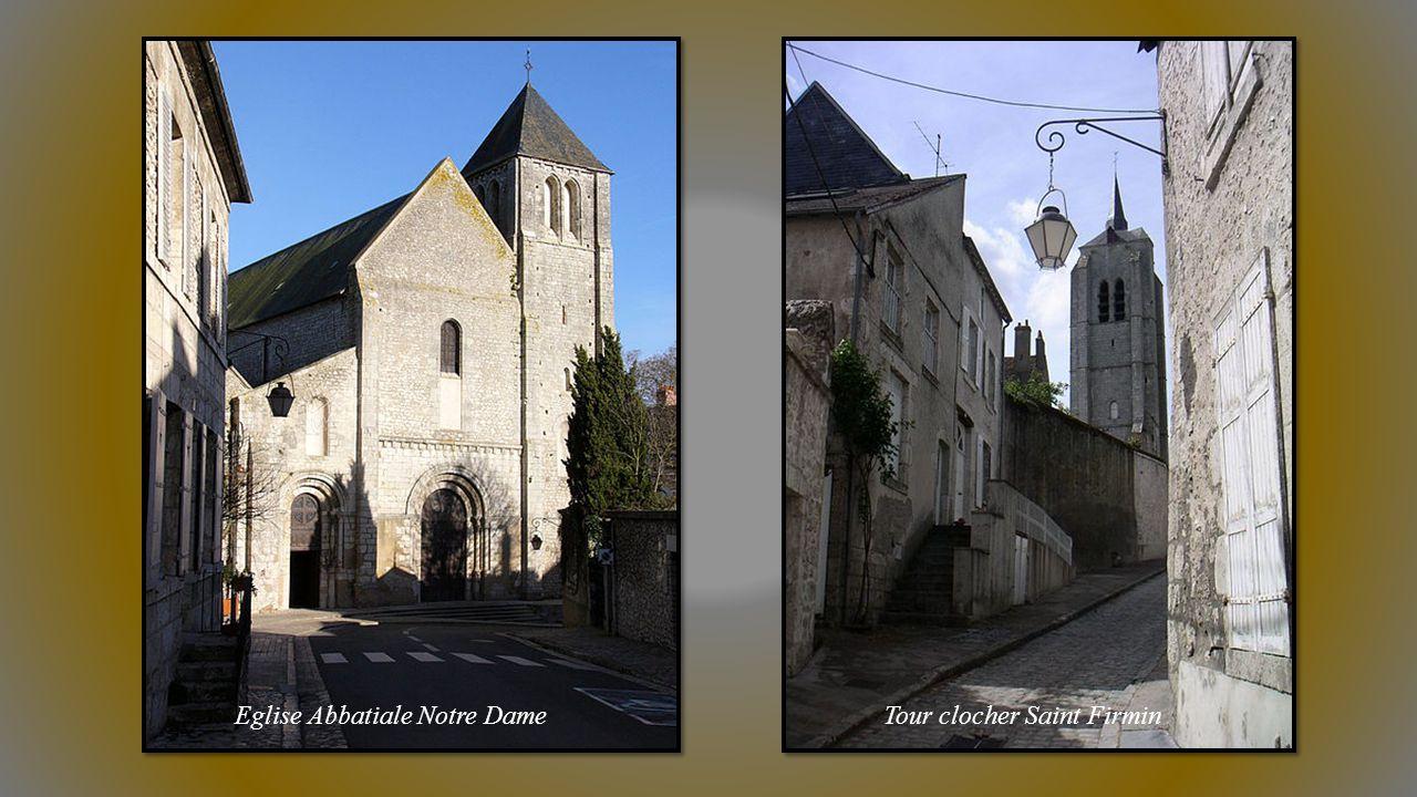 BEAUGENCY (Loiret) porte des Châteaux. Cité Médiévale carrefour entre Beauce, Val et Sologne.