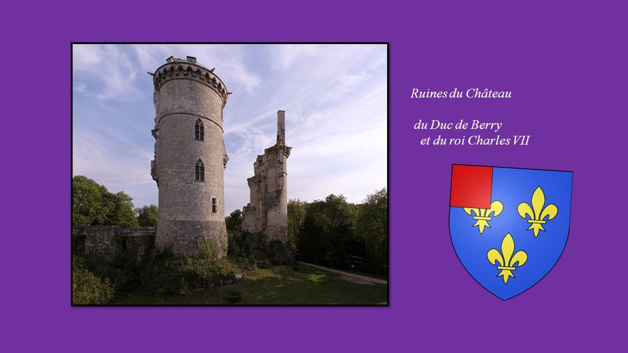 MEHUN sur YEVRE (Cher) Cité historique et Etape sur la route de Jeanne d'Arc.