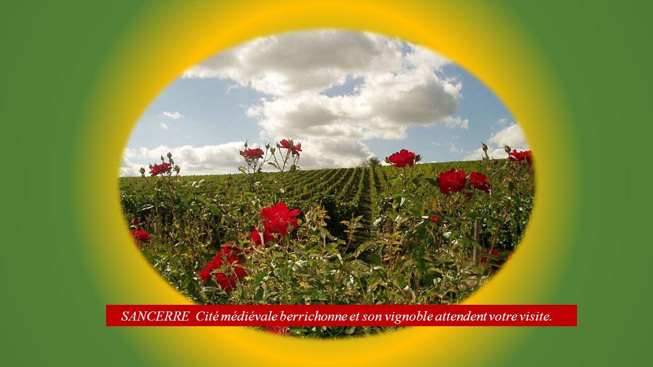Vue panoramique. Depuis l'esplanade Porte César, un panorama sur le Val de Loire et les Monts du Morvan. les vignes