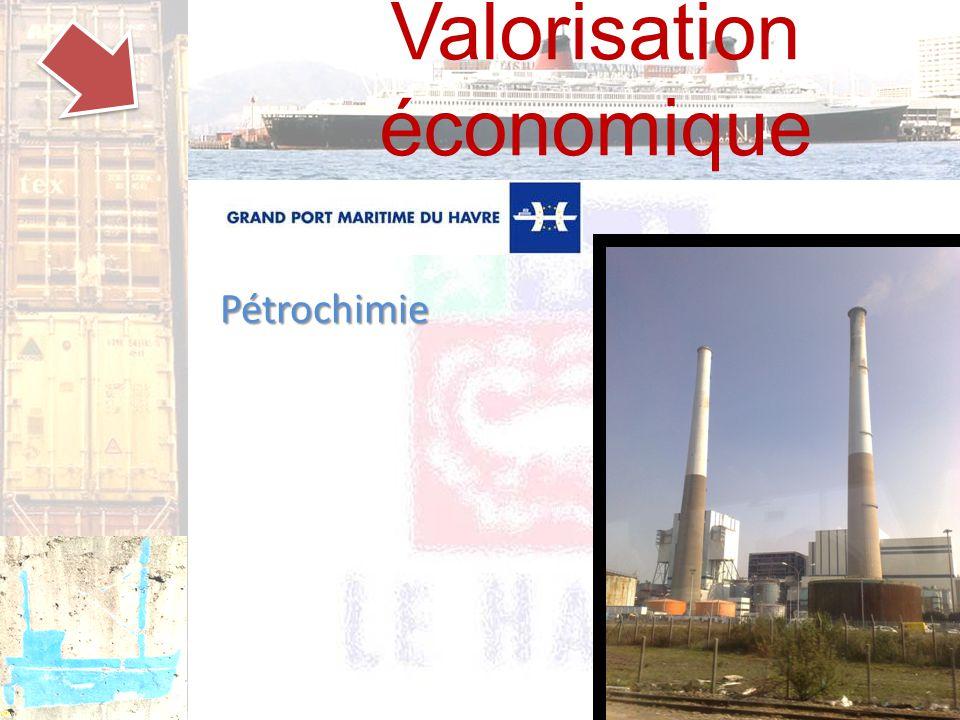 Valorisation économique Pétrochimie