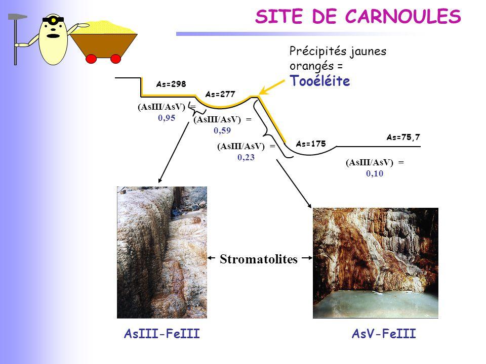 SITE DE CARNOULES (AsIII/AsV) = 0,59 (AsIII/AsV) = 0,23 (AsIII/AsV) = 0,10 (AsIII/AsV) = 0,95 AsIII-FeIII Stromatolites AsV-FeIII Précipités jaunes or