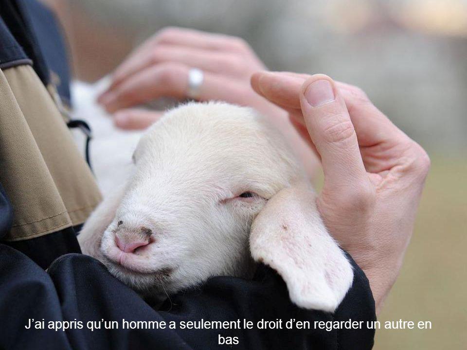 J'ai appris que lorsqu'un nouveau-né serre pour la première fois dans sa petite main le doigt de son père, il le garde attrapé pour toujours.