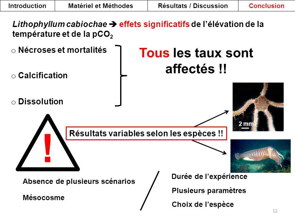IntroductionMatériel et MéthodesRésultats / DiscussionConclusion 12 Lithophyllum cabiochae  effets significatifs de l'élévation de la température et
