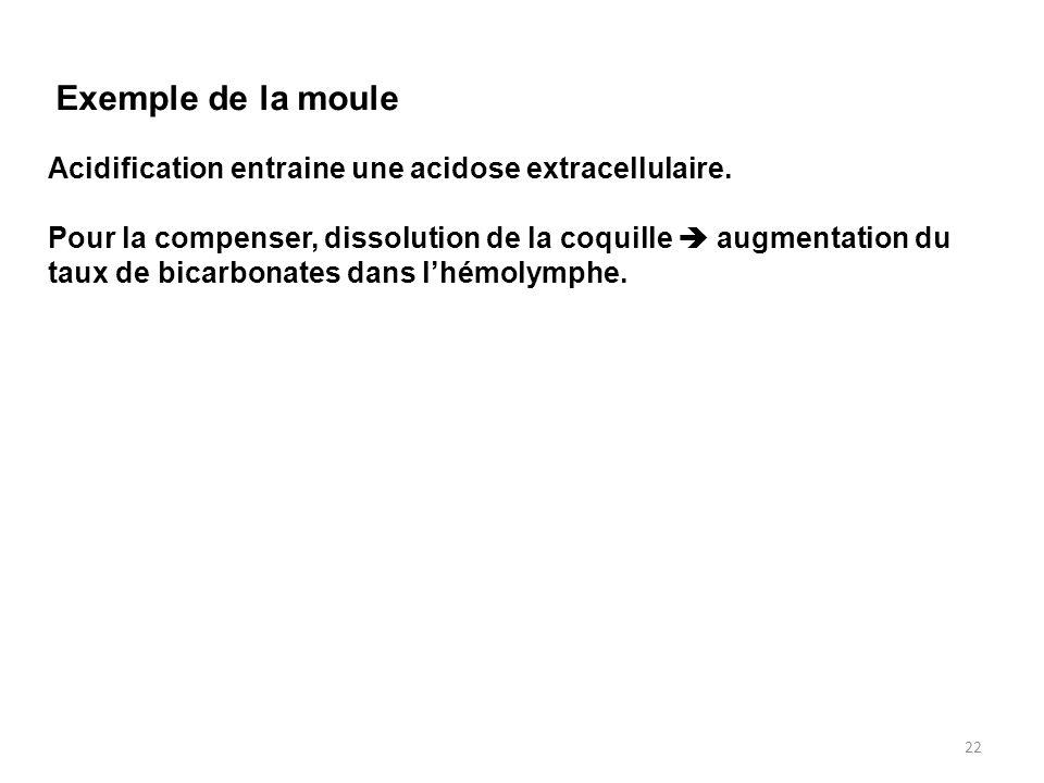 22 Acidification entraine une acidose extracellulaire. Pour la compenser, dissolution de la coquille  augmentation du taux de bicarbonates dans l'hém