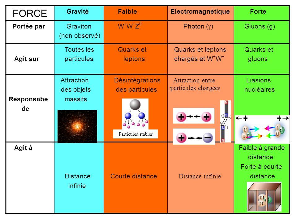 FORCE Gravité FaibleElectromagnétique Forte Portée par Graviton (non observé) W  W  Z 0 Photon (  ) Gluons (g) Agit sur Toutes les particules Quarks et leptons Quarks et leptons chargés et W  W  Quarks et gluons Responsabe de Attraction des objets massifs Désintégrations des particules Attraction entre particules chargées Liasions nucléaires Agit à Distance infinie Courte distance Distance infinie Faible à grande distance Forte à courte distance Particules stables