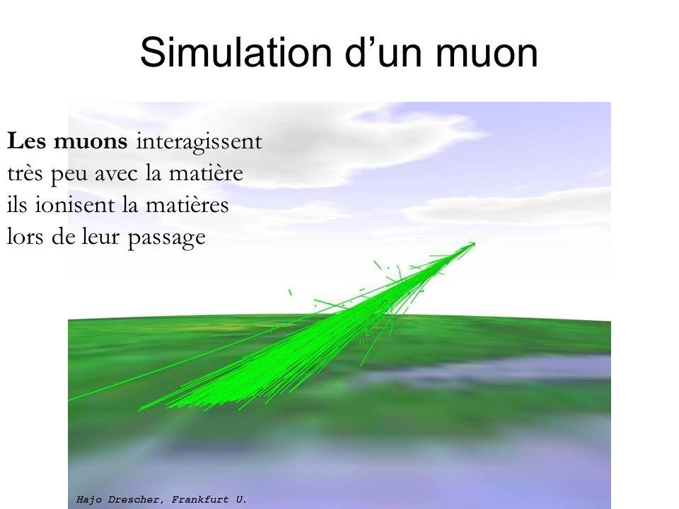 Simulation d'un muon Les muons interagissent très peu avec la matière ils ionisent la matières lors de leur passage
