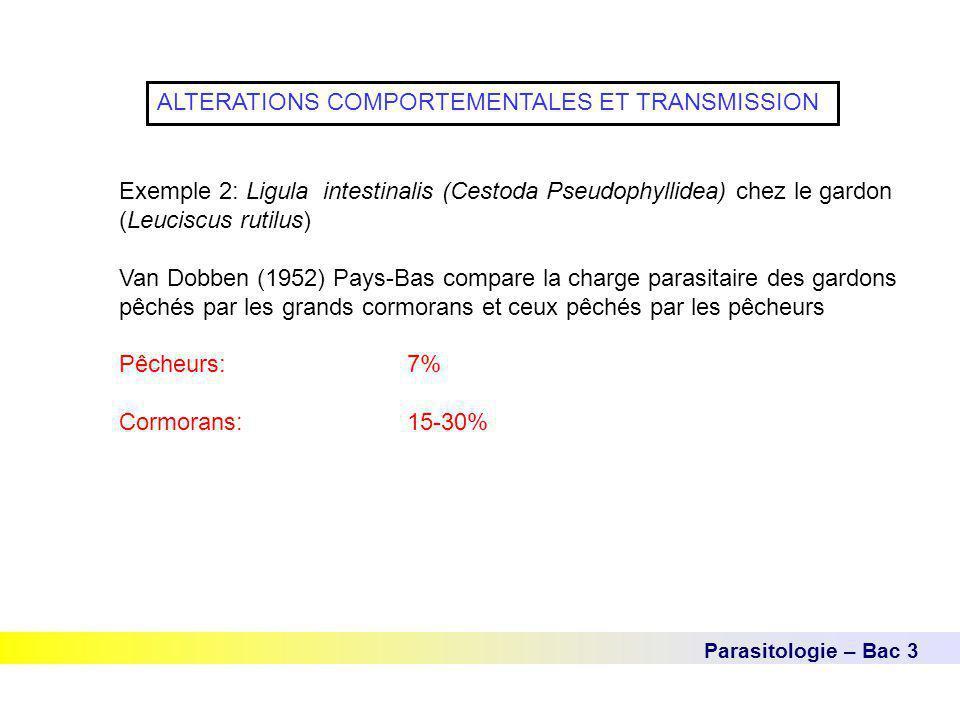 Parasitologie – Bac 3 ALTERATIONS COMPORTEMENTALES ET TRANSMISSION Exemple 2: Ligula intestinalis (Cestoda Pseudophyllidea) chez le gardon (Leuciscus