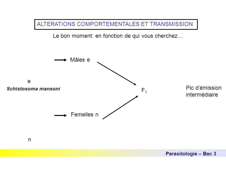 Parasitologie – Bac 3 ALTERATIONS COMPORTEMENTALES ET TRANSMISSION Le bon moment: en fonction de qui vous cherchez… Schistosoma mansoni e n Mâles e Fe