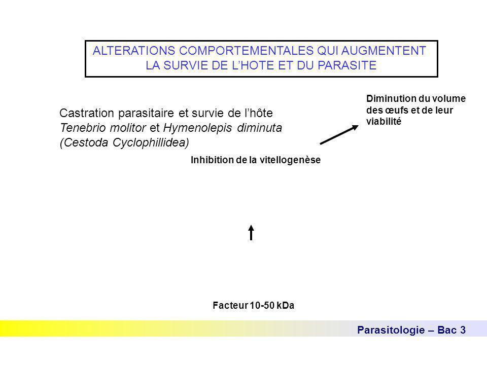 Parasitologie – Bac 3 ALTERATIONS COMPORTEMENTALES QUI AUGMENTENT LA SURVIE DE L'HOTE ET DU PARASITE Castration parasitaire et survie de l'hôte Tenebr