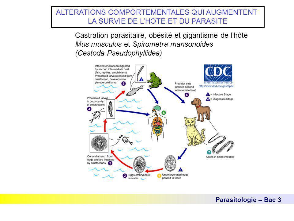 Parasitologie – Bac 3 ALTERATIONS COMPORTEMENTALES QUI AUGMENTENT LA SURVIE DE L'HOTE ET DU PARASITE Castration parasitaire, obésité et gigantisme de