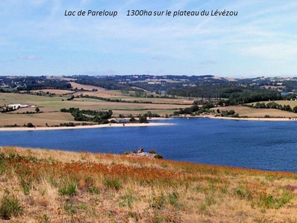 Lac de Pareloup 1300ha sur le plateau du Lévézou