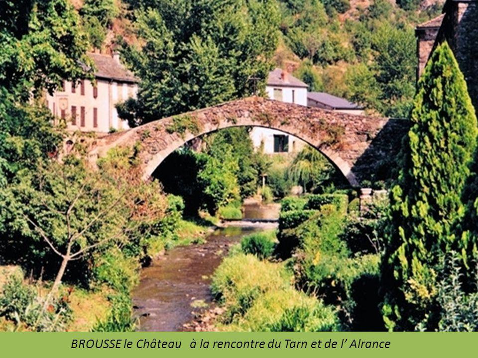 SAUVETERRE de Rouergue ancienne bastide Royale sur le plateau de Ségala. Place, Collégiale Saint Christophe et jardins à visiter