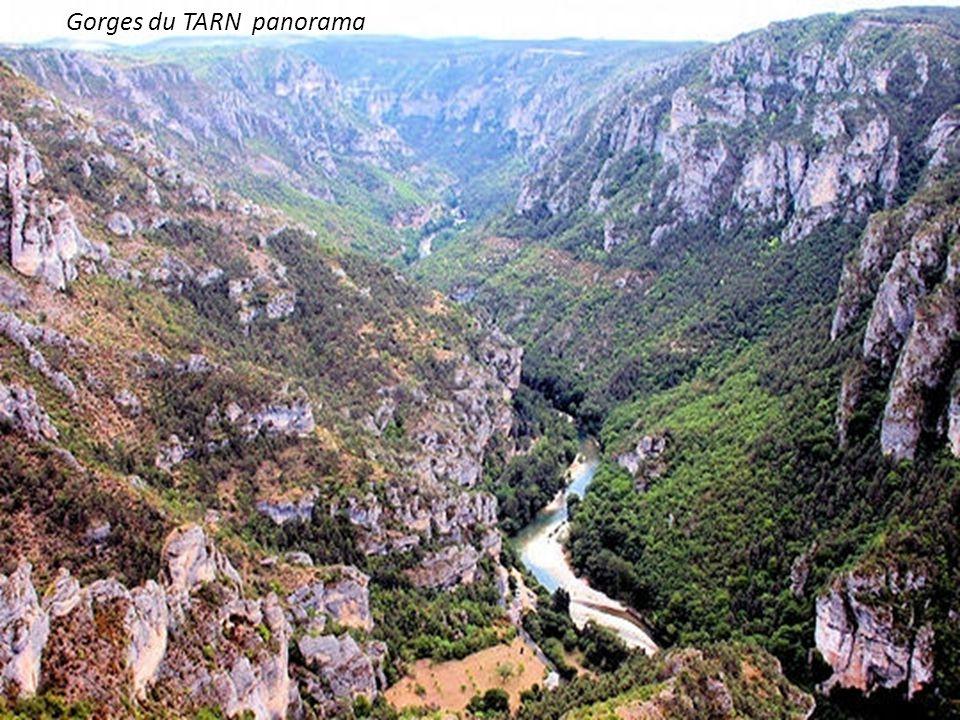 Gorges du TARN panorama