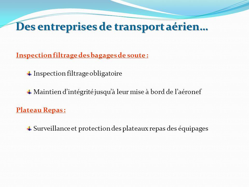 Inspection filtrage des bagages de soute : Inspection filtrage obligatoire Maintien d'intégrité jusqu'à leur mise à bord de l'aéronef Plateau Repas :