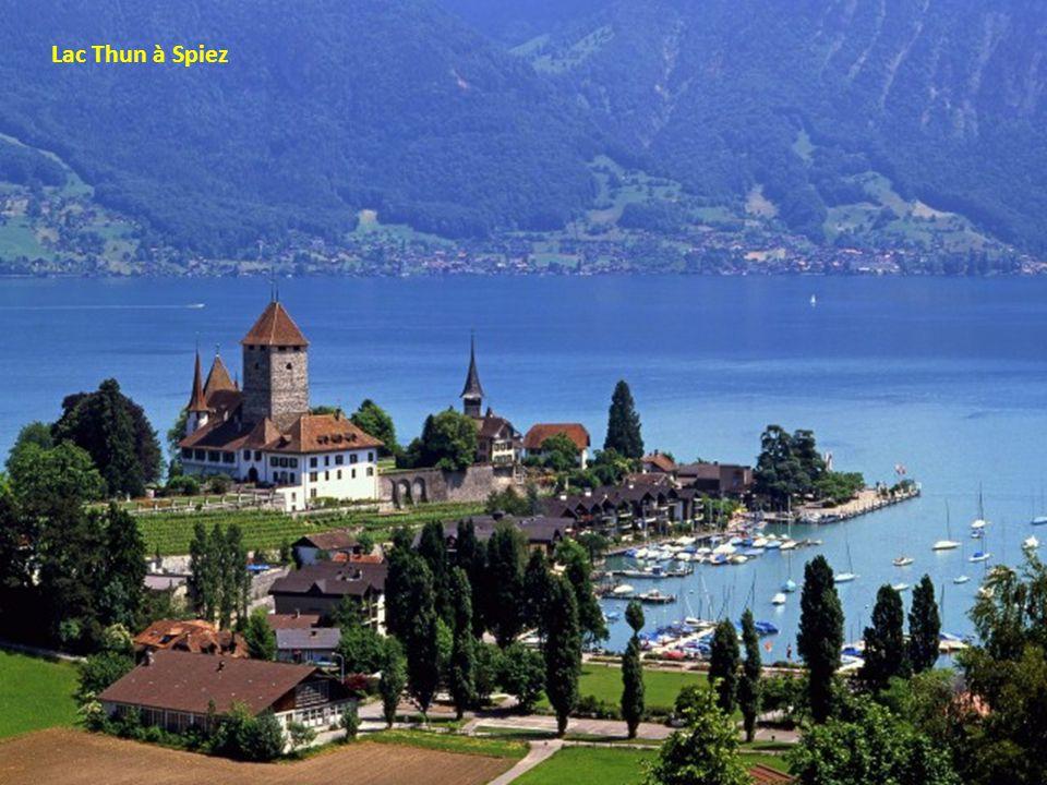 Le lac Genève