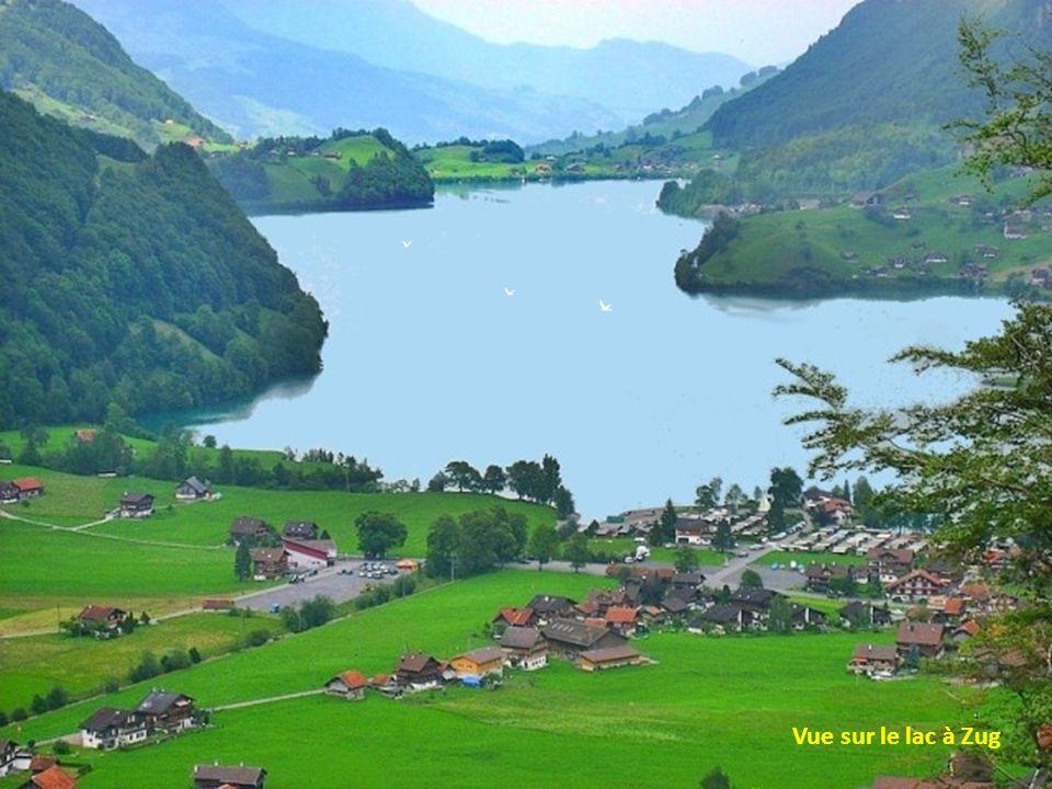 Paysage typique de la Suisse dans les Alpes