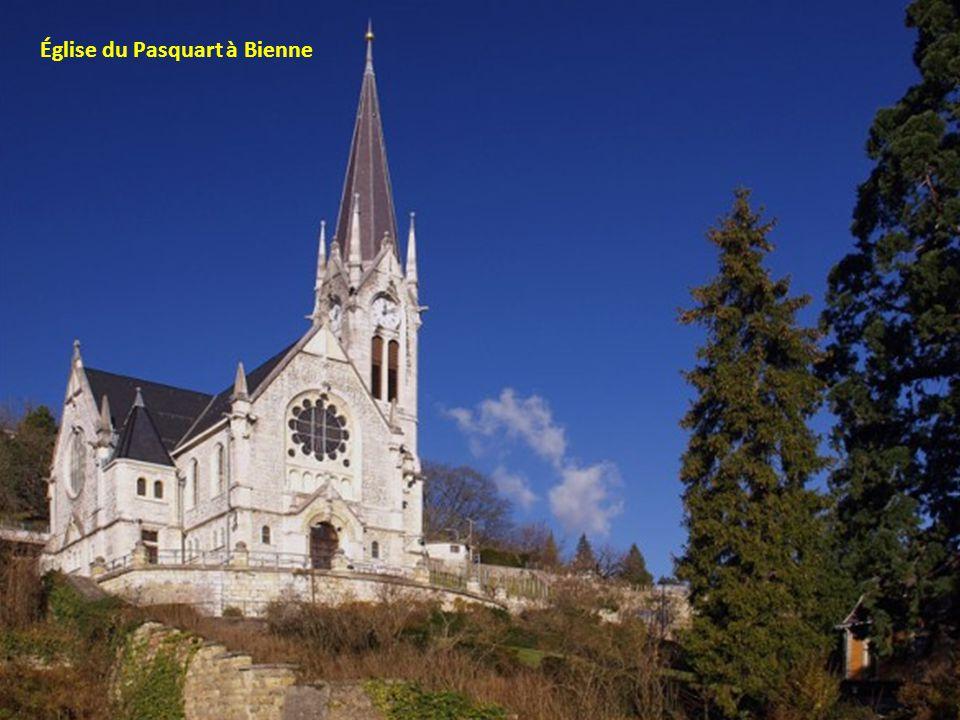 Le château de Gruyere et ses jardins