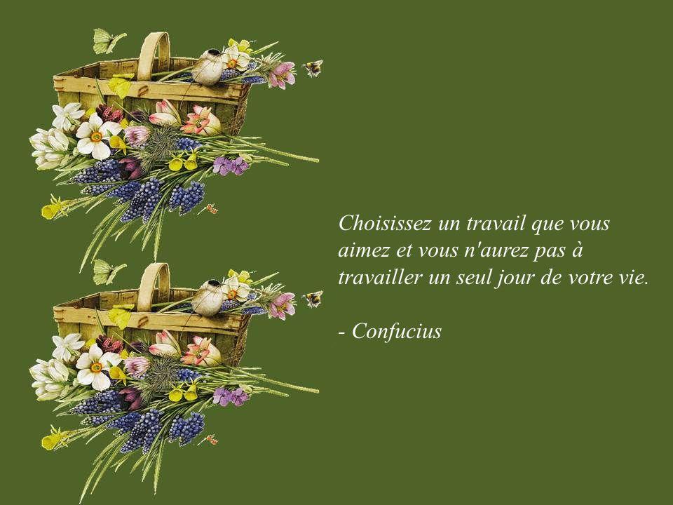 La modestie n est pas une vertu, seulement de la prudence. - Georges-Bernard Shaw