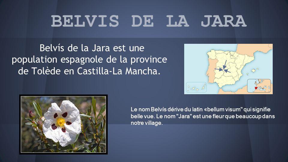 BELVIS DE LA JARA Belvís de la Jara est une population espagnole de la province de Tolède en Castilla-La Mancha.