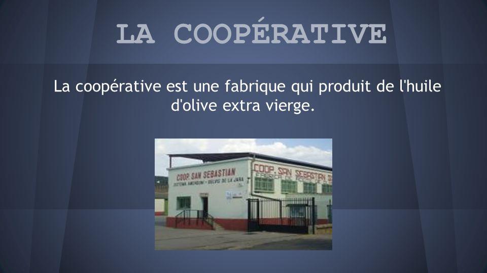 LA COOPÉRATIVE La coopérative est une fabrique qui produit de l huile d olive extra vierge.