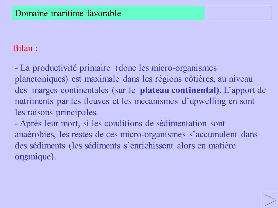 - La productivité primaire (donc les micro-organismes planctoniques) est maximale dans les régions côtières, au niveau des marges continentales (sur l